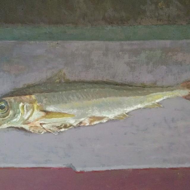 Haddock (Eisge)