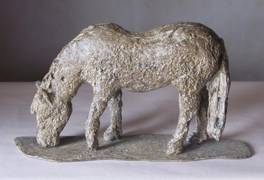 Rag Bone Pony