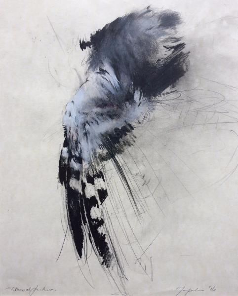 Woodpecker Wing