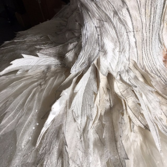 Costume detail, Swan Lake
