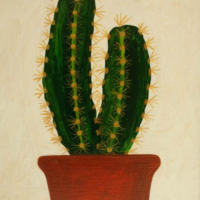 knox-cactus-oil-11x9inches