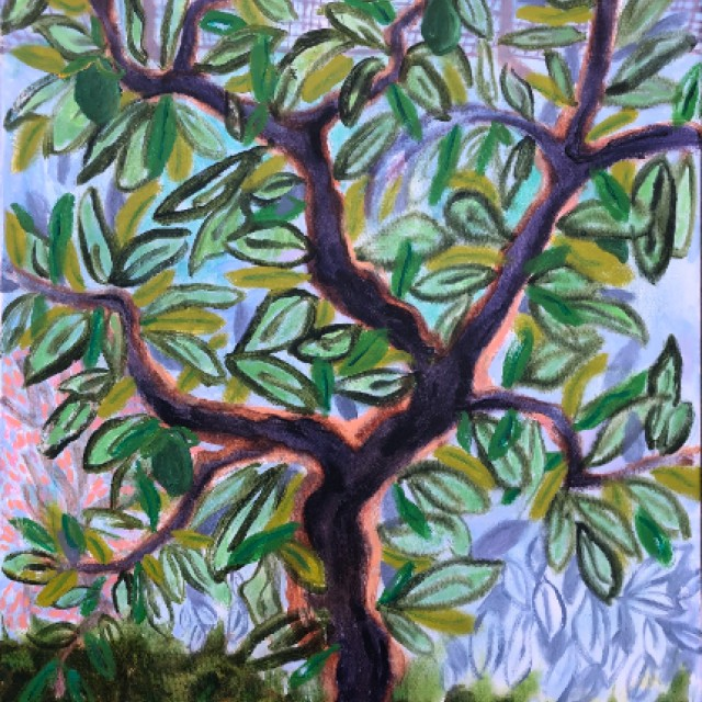 Citrus Tree, Bras Panon