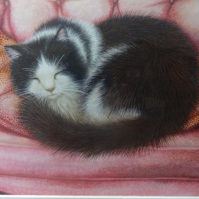 Sleeping Cat in Pink Armchair
