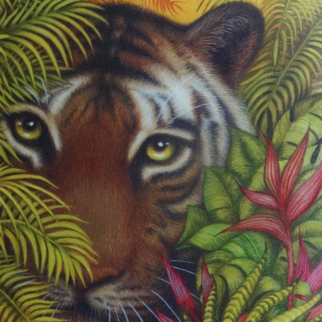 Tiger in the Undergrowth