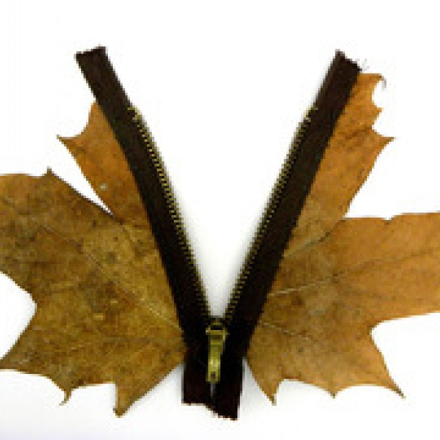 Leaf with Zip