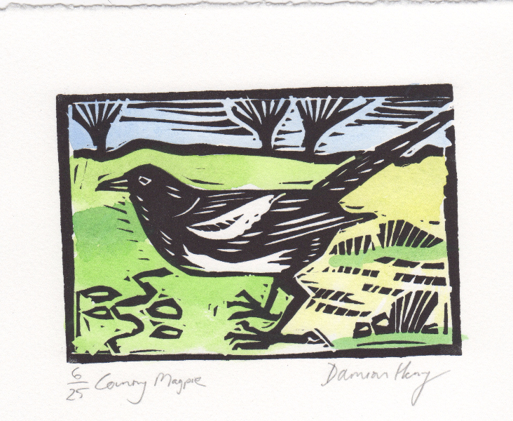 Country Magpie