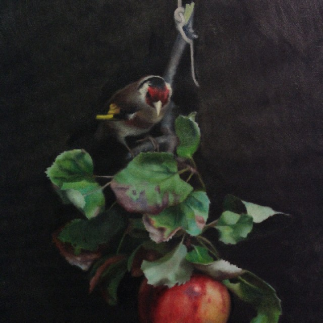 Still life with Apples & Goldfinch