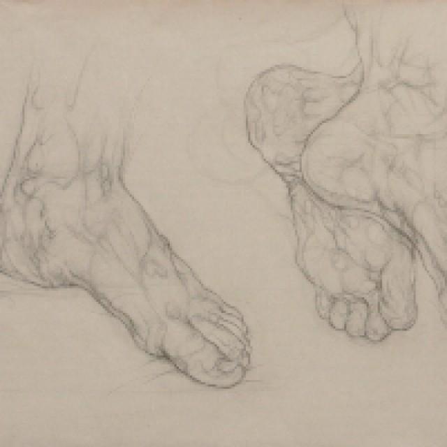 Sophies Feet