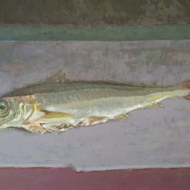 Haddock (Eisge) £2800