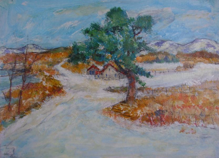 The Scots Pine, Winter, Loch Creran