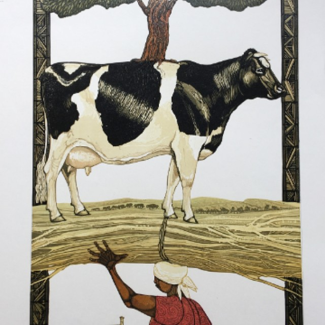 Cow in Africa