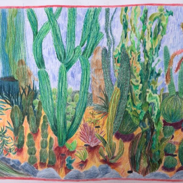 Cactus House, Welch Winter Gardens