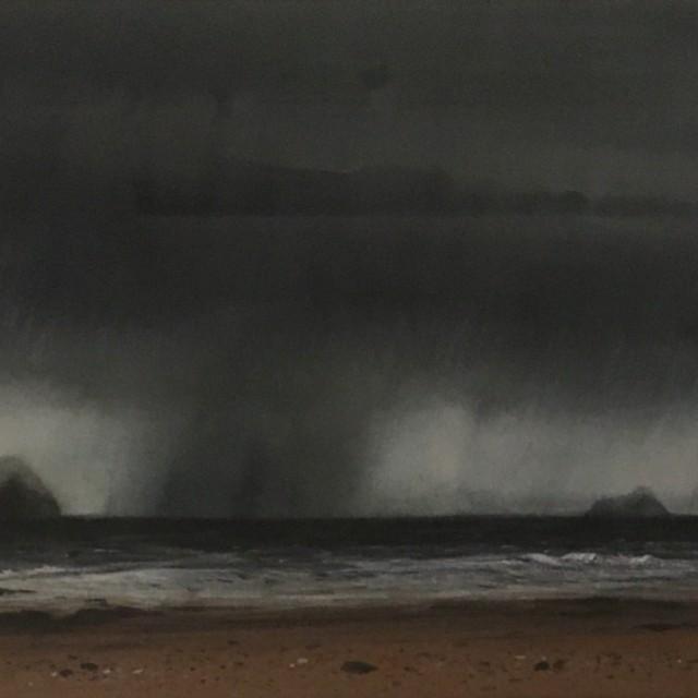 Ballantrae Beach, February (detail)