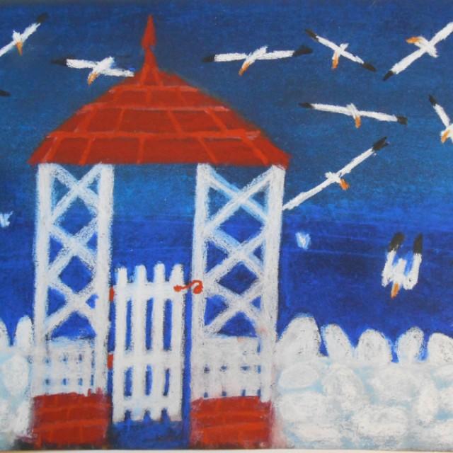 Gannets & gate