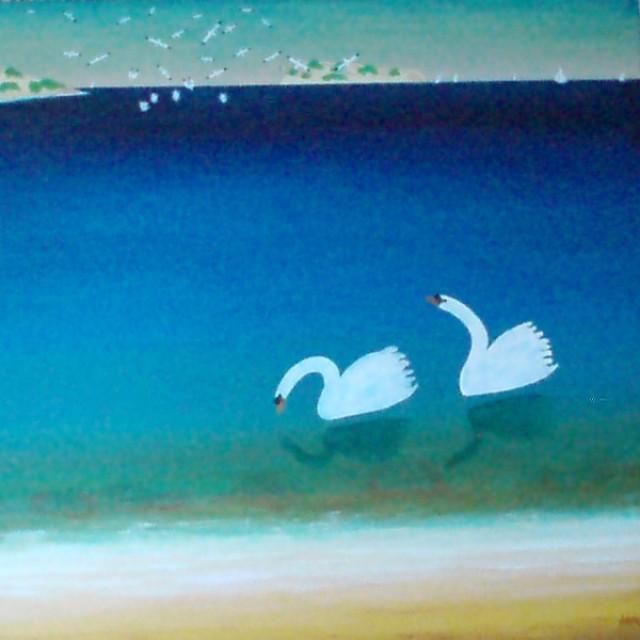 Gannets & Swans