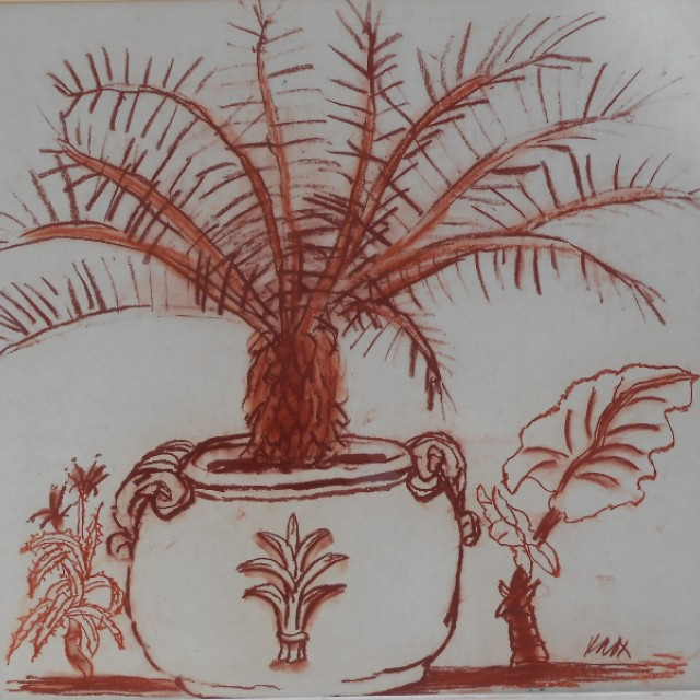 Plant in a tub, c. 1980s