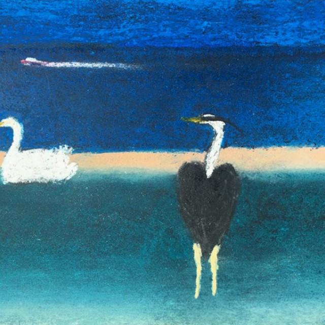 Heron & swan