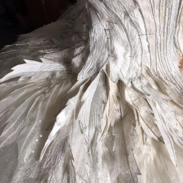 Costume detail, Swan Lake