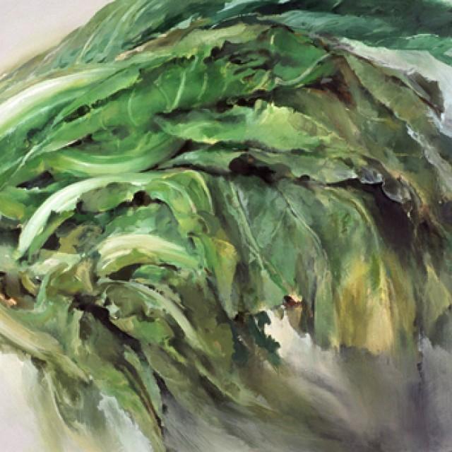 Cabbage No. 1