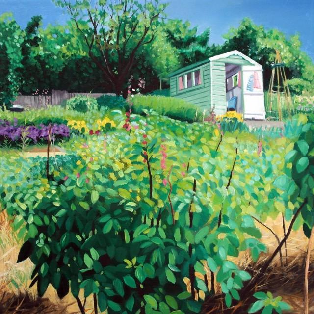 Beechwood Allotments Alisons Hut Summer