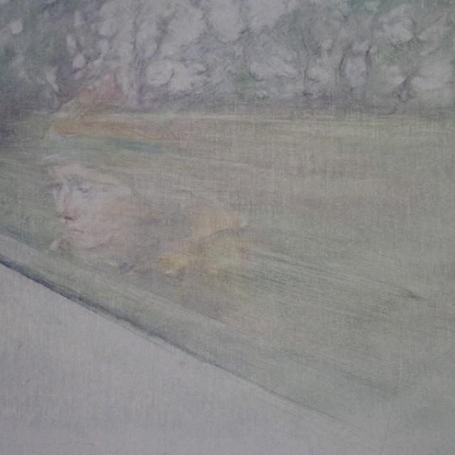 Train Window Reflection Study